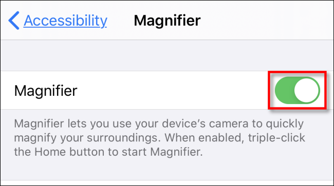 Tap Magnifier switch in iPhone Settings